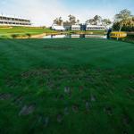 Le redémarrage du PGA Tour en 2020 représente une énorme opportunité pour le golf dans la culture sportive américaine