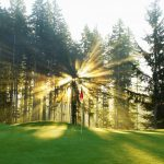 Les dernières données suggèrent que le monde du golf est prêt pour un énorme retour