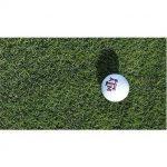 Texas A&M AgriLife Research perfectionne la variété de zoysiagrass pour les verts