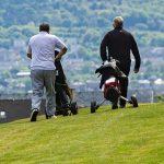 Martin Dempster: la flexibilité est la clé alors que les golfeurs sont confrontés à un dilemme concernant le voyage vers les parcours écossais