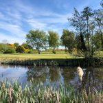 Les golfeurs de Derry reprennent le rythme des choses alors que les terrains du nord ouvrent leurs portes demain