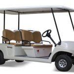 Rapport de recherche sur le marché mondial des voiturettes de golf avec mise à jour COVID-19 - NJ MMA News