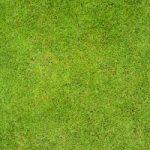 Les 13 golfeurs les plus gagnants de l'histoire de la PGA | AtTheTee.com
